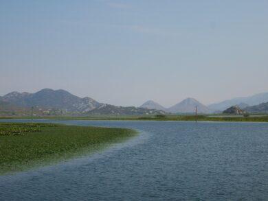 Экскурсия по Скадарскому озеру в Черногории