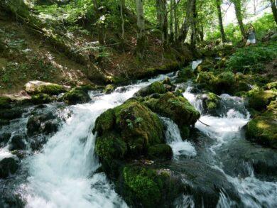 Экскурсии в Черногории, цены, расписание и советы